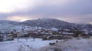 Tarancueña nevado